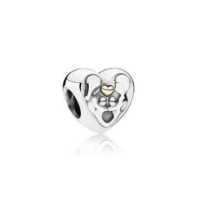 Charms - Zilver 14kt   Pandora